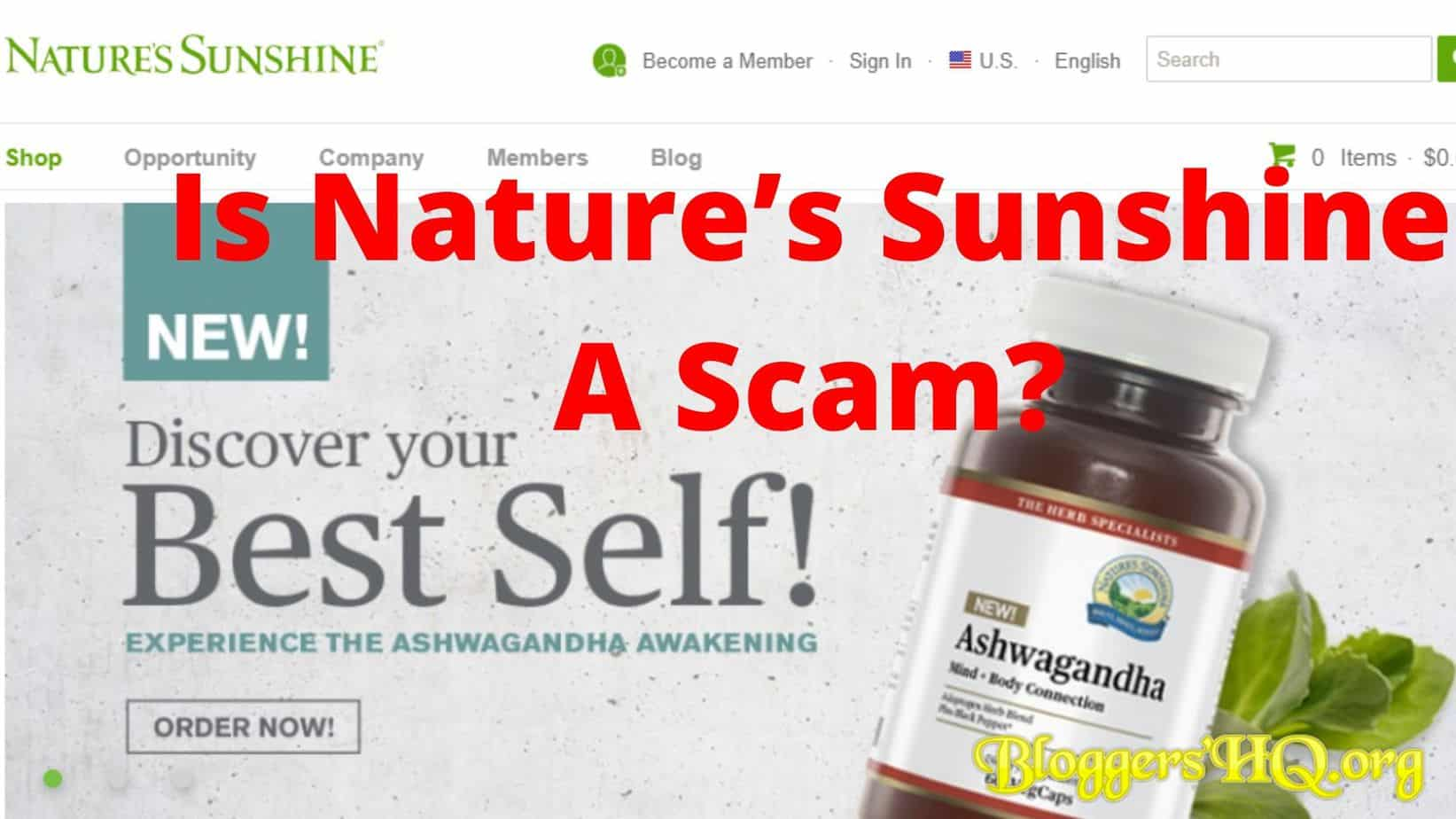 Is Nature's Sunshine A Scam Featured